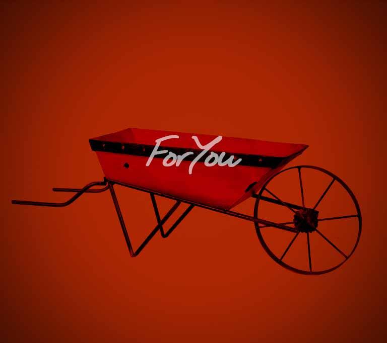 web_FORYOU_BAJA